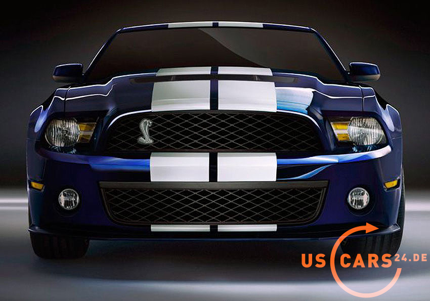 mustang gt shelby 500 homepage dokument webpage page web netz homepage 2010 shelby gt500. Black Bedroom Furniture Sets. Home Design Ideas